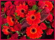 23rd Jun 2014 - Beautiful bouquet