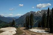 24th Jun 2014 - Top O' the Mountain