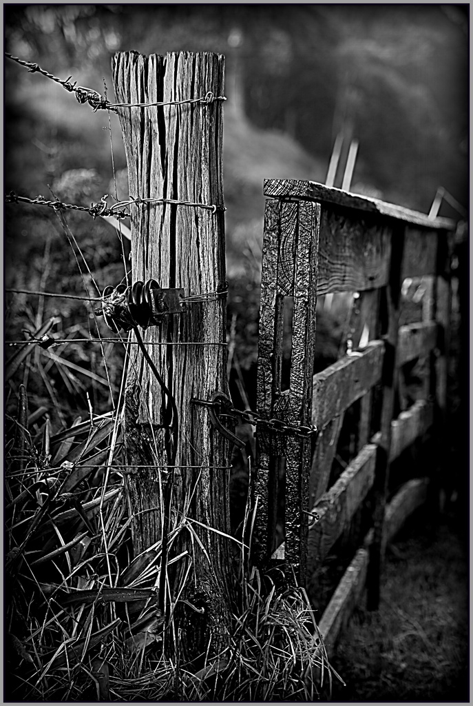 The old gatepost by dide