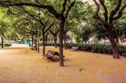 2nd Jul 2014 - Otoño / Autumn