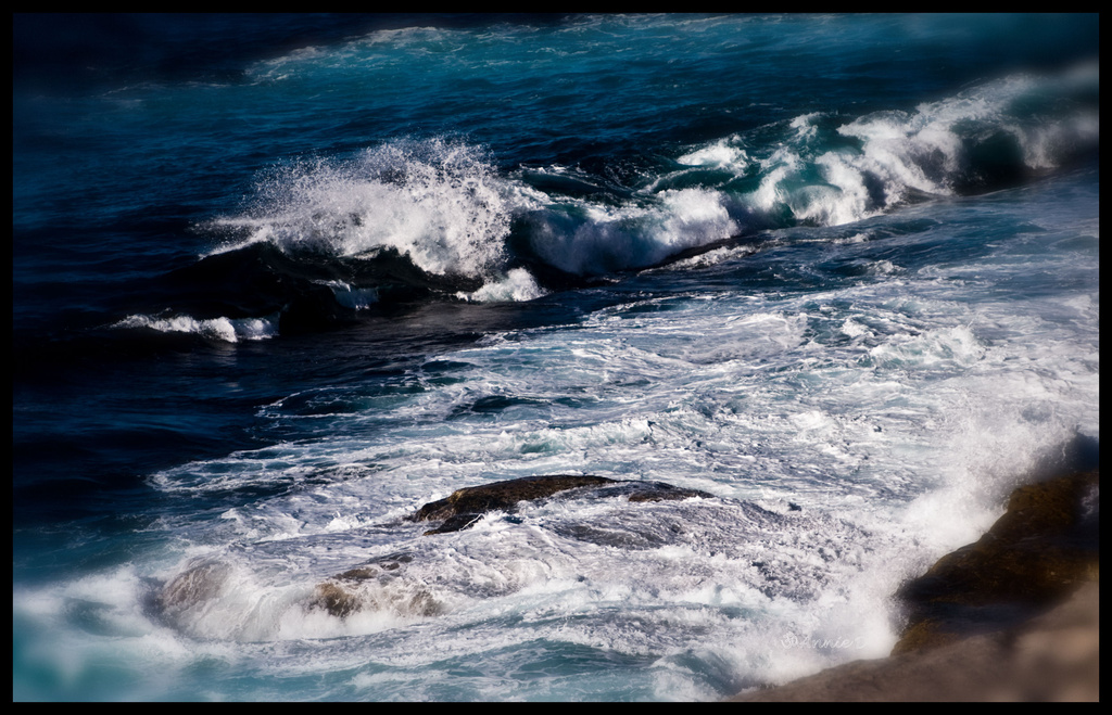 I can hear the ocean's roar by annied