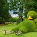 le Jardin Botanique on 365 Project