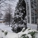 First snow day by dora