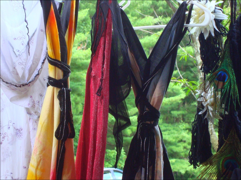 Dresses on Display by mcsiegle