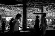 13th Jul 2014 - Espejito , espejito / Mirror, mirror