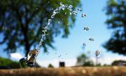 13th Jul 2014 - Re-hydration!