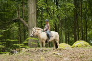 15th Jul 2014 - Fjord and I in the forest