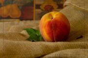 17th Jul 2014 - Just Peachy