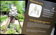 19th Jul 2014 - Tripod Bee Hotel