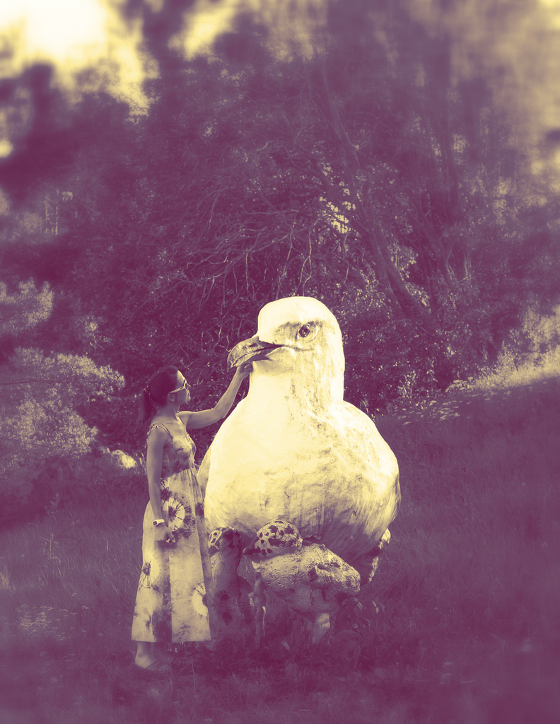 Bird Whisperer by susale