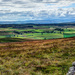 23rd July 2014 -The edge of the Moors by pamknowler