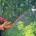 Summer Shower Rainbow by soboy5