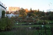 14th Oct 2010 - 365-Botanical Garden IMG_1196