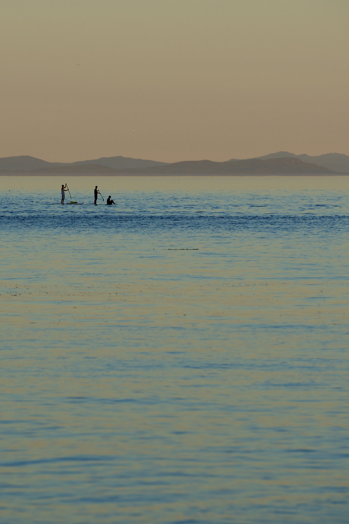 3 boys and 2 Paddle Boards by kwind