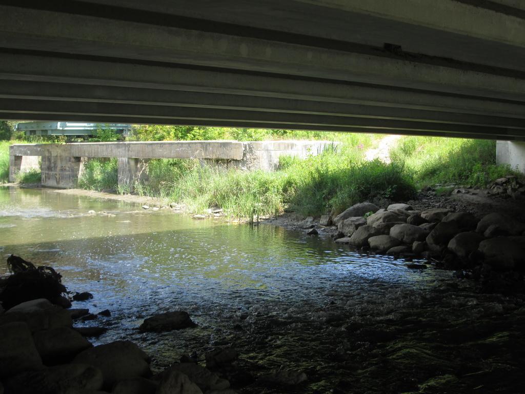 Under a bridge by bruni