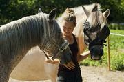 11th Jul 2014 - I love my horses :)