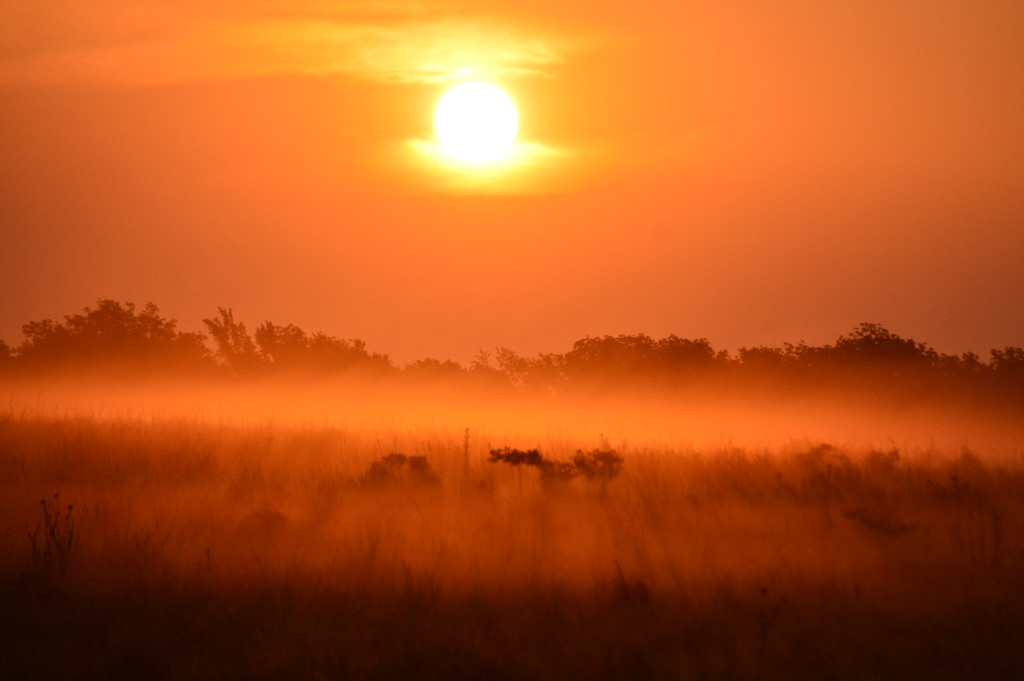 Tangerine Fog Sunrise (SOOC) by kareenking