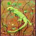 Gecko by julzmaioro