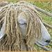 Leicester Longwool Sheep by carolmw