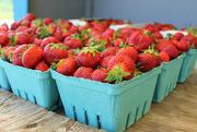 6th Jul 2014 - Strawberries!