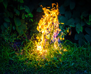 7th Aug 2014 - Get Pushed 107:  Burning Bush