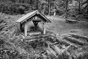 8th Aug 2014 - La Fontaine de Sainte Apolline
