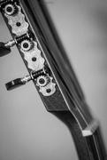 9th Aug 2014 - guitar #101