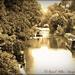 Grand Union Canal,Blisworth by carolmw
