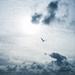 Mudeford Sky