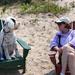 Dog Sitting and Dog-sitting by jyokota