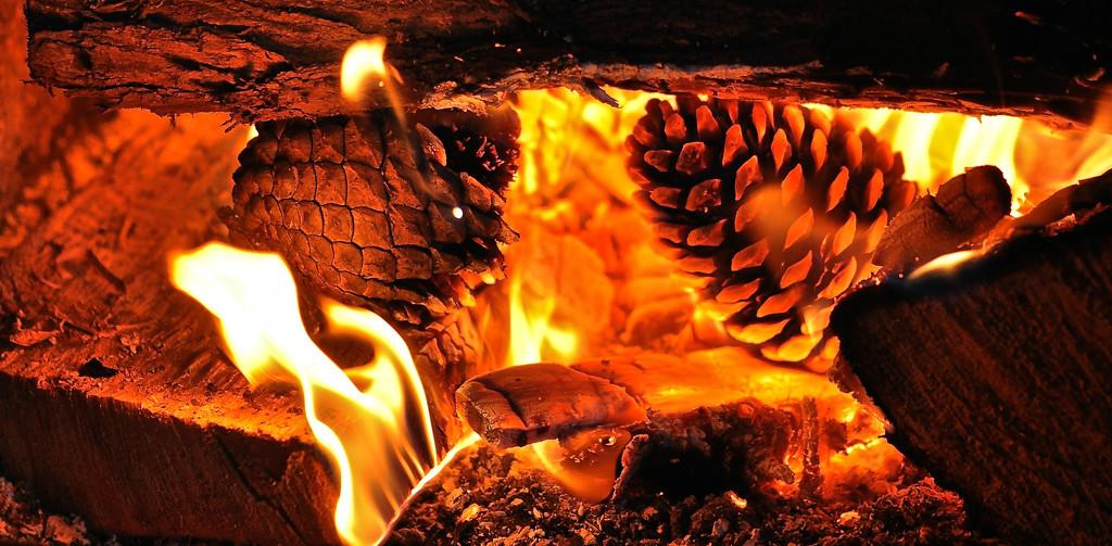 Warm by brigette