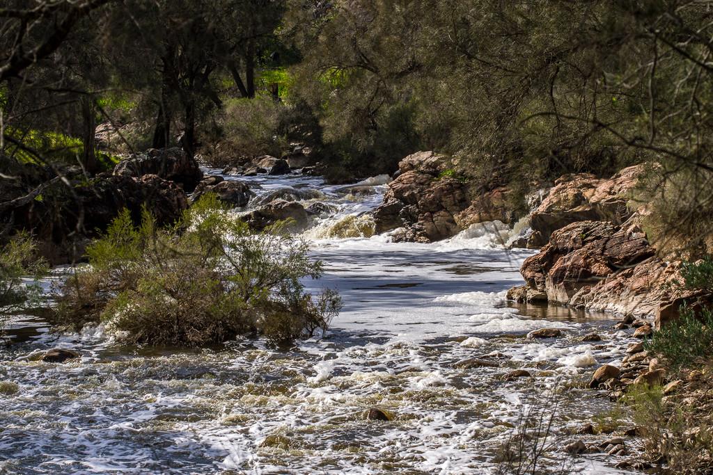 Avon River  by gosia