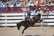 26th Jul 2014 - Cheyenne Frontier Day