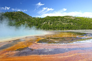 31st Jul 2014 - Yellowstone-vibrant colours