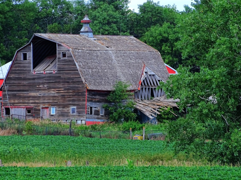 Crumbling Barn Number 3 by maggiemae