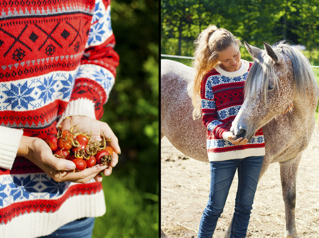 Sweater Weather and Rose Hips by lily