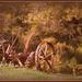 Hay mower by julzmaioro