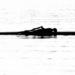 Rowing is Backbreaking by yaorenliu