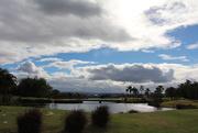 14th Aug 2014 - Palm Meadows Clouds