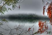 14th Aug 2014 - Morning Fog