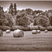 Haybales In Sepia
