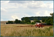 15th Aug 2014 - The Farmer's Field