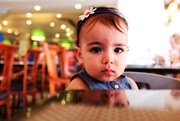 13th Aug 2014 - Lila / 341 Days