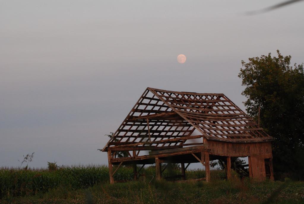 Super Moon by farmreporter