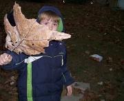 15th Oct 2010 - Big Leaf