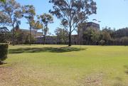 17th Aug 2014 - My Brisbane 40 - University of Qld 2