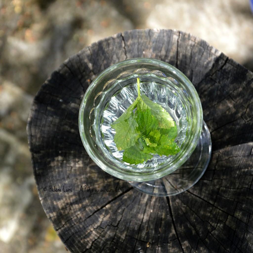 Mint water  by parisouailleurs