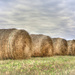 Hay Bales on a Cloudy Day by taffy