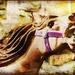 Vintage Merry-go-round Horse