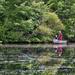 Pond Cleanup (Color Version)